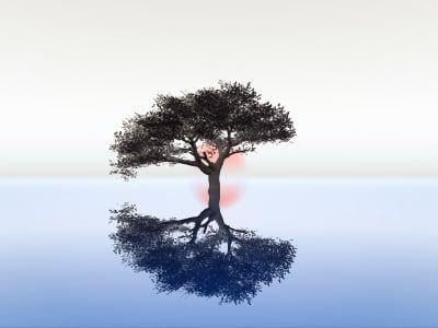 12º Princípio do Manifesto Ágil – Retrospectiva